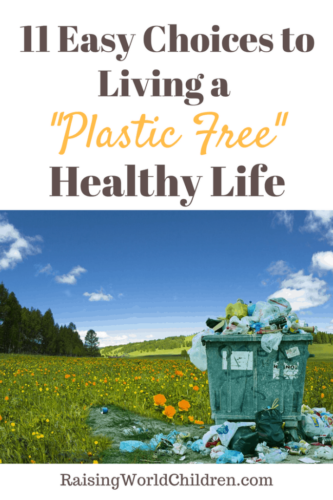 11 Easy Choices to Living a Plastic Free Healthy Life