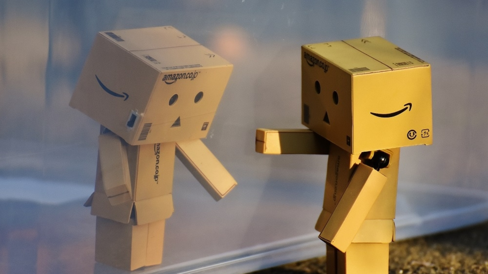 Canva - Danbo Figures Separated by Glass