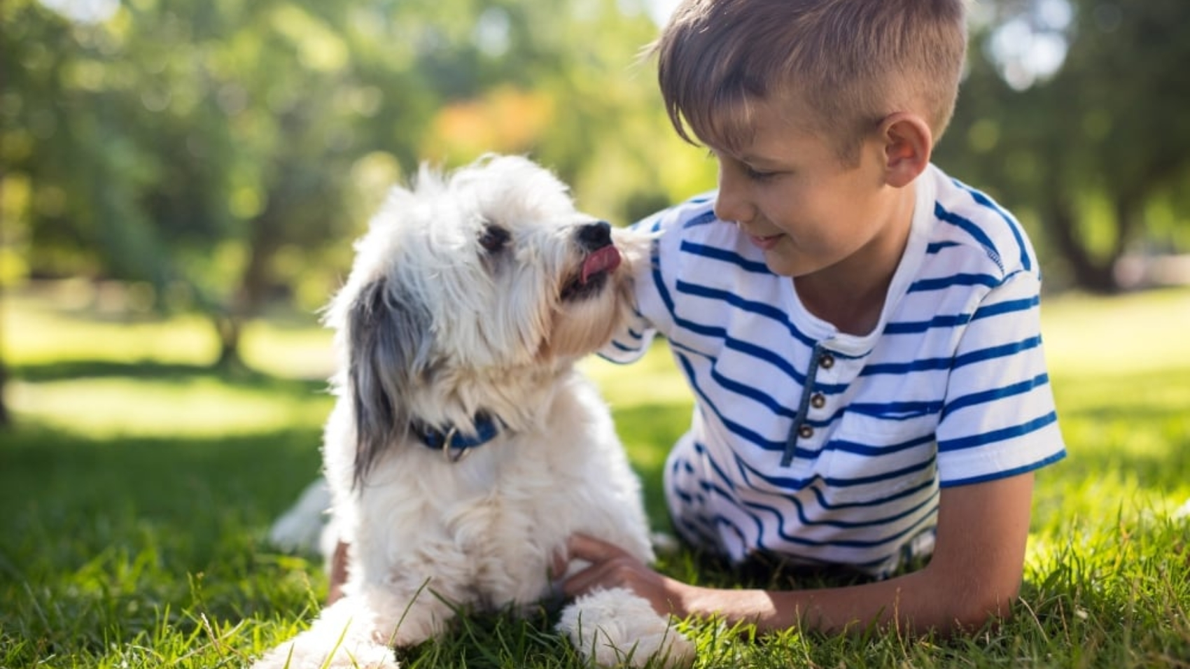 How to Discuss Getting a Family Pet With Your Kids (2)